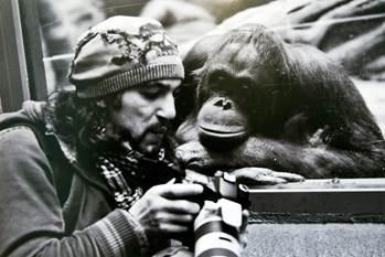 Chimp camera