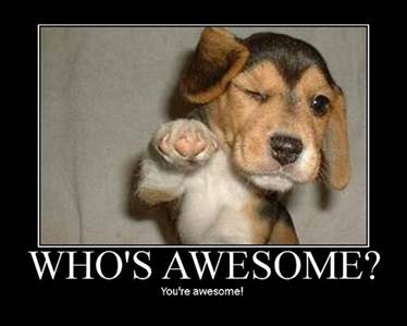 Who's Awesome!?